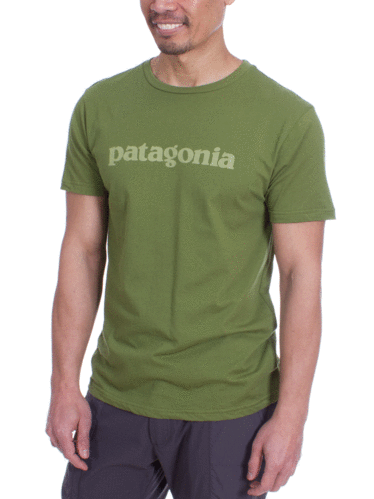 Patagonia Text Logo Organic T-Shirt (Sprouted Green)